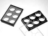 6 孔玻底板(激光共聚焦专用培养板)