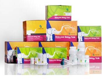 血液蛋白快速提取试剂盒(离心柱法)