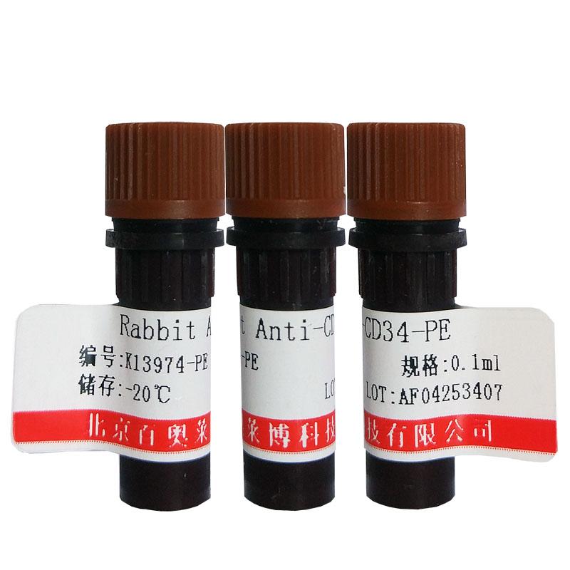 血栓素合成酶抗体