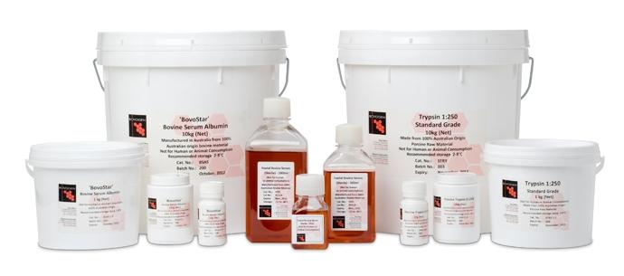 牛血清白蛋白 BSA Bovine Serum Albumin