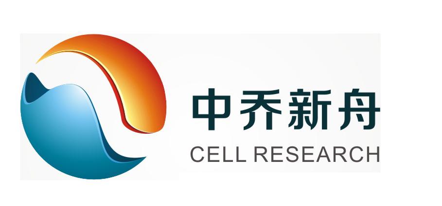 大鼠淋巴纤维细胞RLF