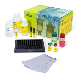 Bio-Plex Pro人细胞因子48-plex筛选检测试剂盒