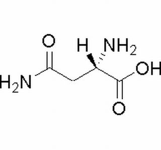 L-天冬酰胺(70-47-3)分析标准品,HPLC≥98%