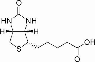 D-生物素(58-85-5)分析标准品,HPLC≥98%