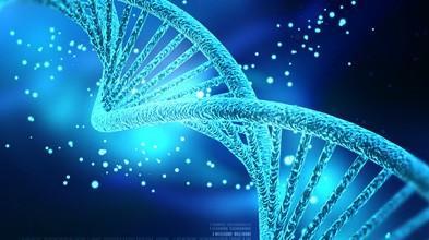 DNA甲基化检测(MSP)
