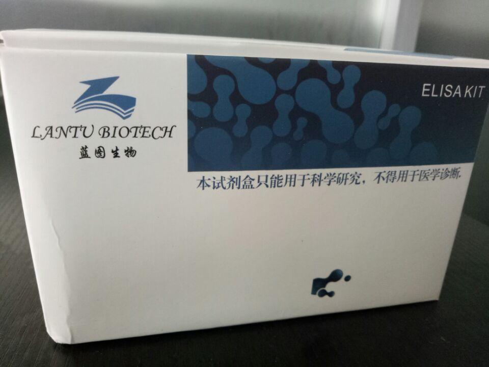 小鼠肿瘤标志物(CA724)定量检测试剂盒(ELISA试剂盒)