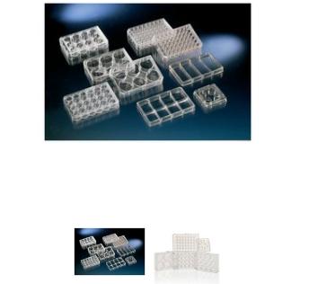 Nunc多孔细胞培养板,聚苯乙烯,带 盖,已灭菌,孔数,24,建议工作容量,1ml/孔,每包/箱数,1/75