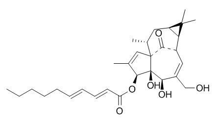 3-O-(2'E,4'E-癸二烯酰基)巨大戟二萜醇(466663-11-6)分析标准品,HPLC≥95%