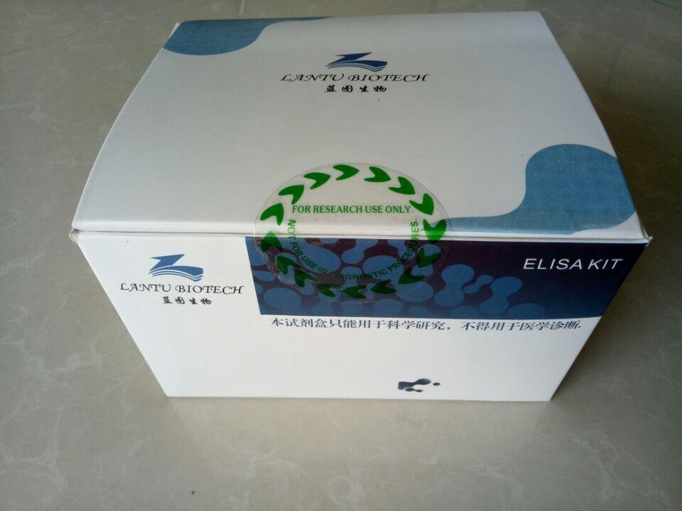 人单纯疱疹病毒II型IgM抗体(HSV II IgM)定性检测试剂盒(ELISA试剂盒)