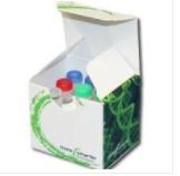 亚克隆载体-Clone Smarter TOPO载体克隆试剂盒