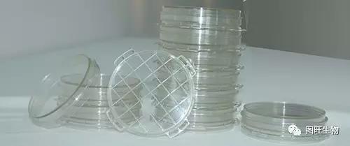 浮游菌采样碟(重复使用)