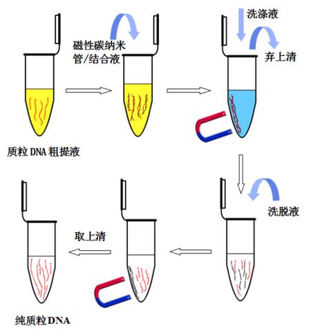 去内毒素质粒小提中量试剂盒(1-5ml菌液)