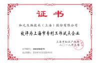 2018.9上海市专利工作试点企业.jpg