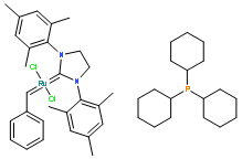 2×CTAB提取液
