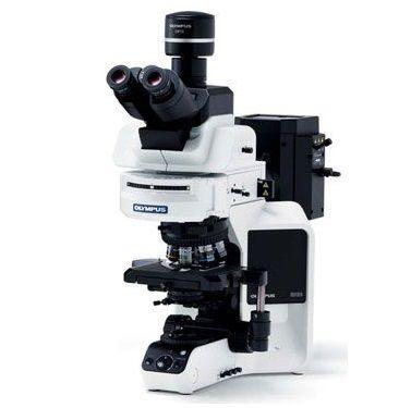 奥林巴斯BX63生物显微镜
