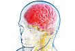 FDA 批准礼来偏头痛预防药物 Emgality