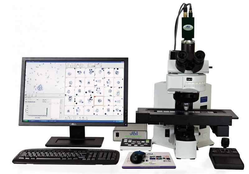 BandView 染色体中期自动扫描分析