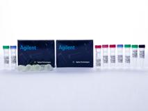 Agilent 5067-4626 High Sensitivity DNA Kit (Agilent 2100生物芯片分析系统配套试剂耗材)