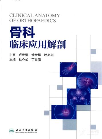 骨科临床应用解剖 杜心如 丁自海主编2016