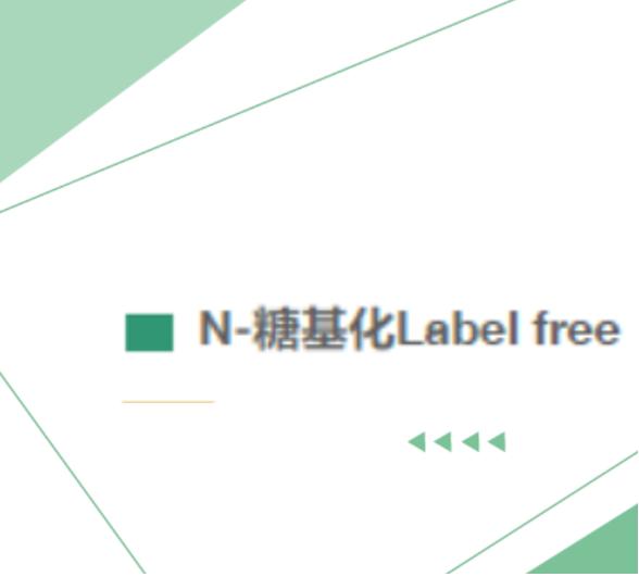 N-糖基化 Label Free