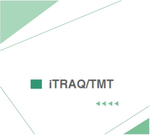 iTRAQ/TMT