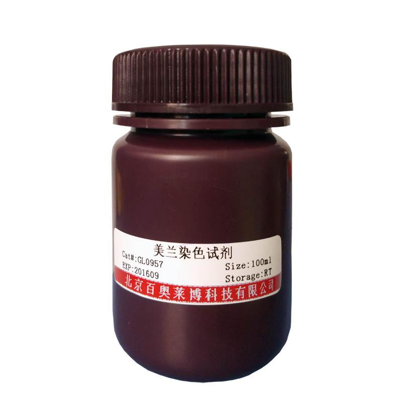 钾离子荧光探针