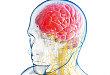艾尔健拟明年初递交偏头痛药物 Ubrogepant 的上市申请