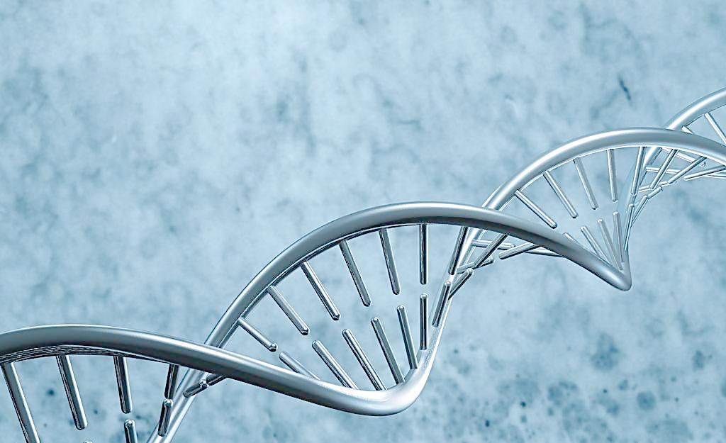 NA12878,DNA from LCL,50 µg人类基因组DNA标准品