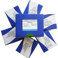 非洲猪瘟病毒(ASFV)单重荧光PCR检测试剂盒