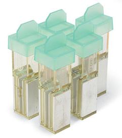 Gene Pulser®/MicroPulser™ Electroporation Cuvettes, 0.2 cm gap #1652082