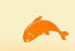 播咖锦鲤已经找到啦!发现要学那么多的课程,已经哭晕在值班室。