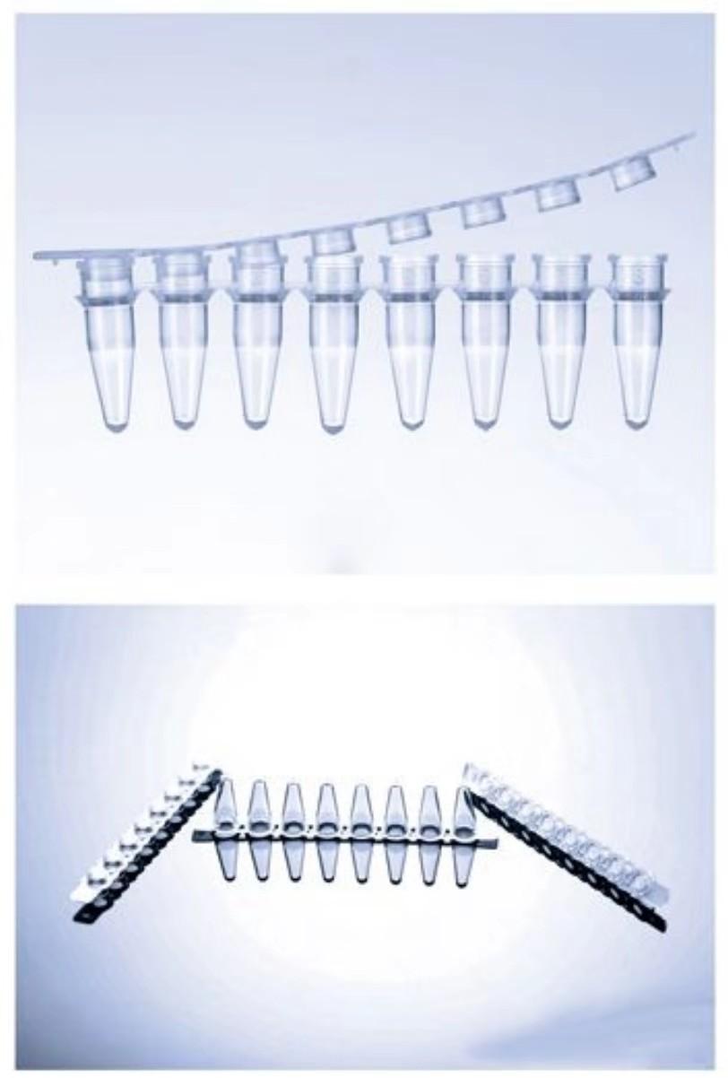 PCR八联排条板(荧光定量)