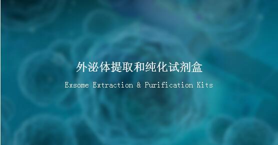 外泌体提取和纯化试剂盒(血清或血浆)