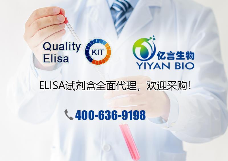 蛋白酶抑制剂Cocktail(干粉)(EDTA free)