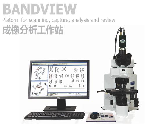 88必发娱乐官网_ASI BandView成像分析工作站