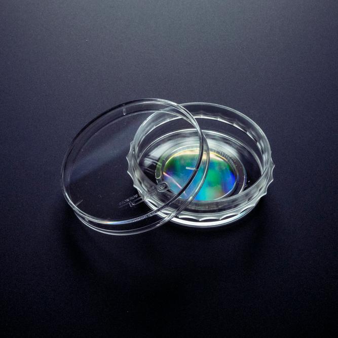 NSB纳米涂层仿生培养皿 35mm