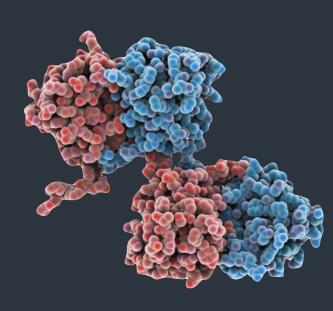 免疫共沉淀/Co-IP