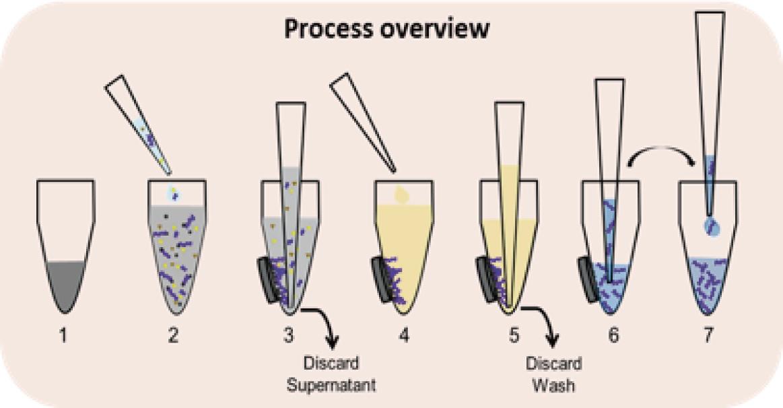 Axygen® AxyMag Nano PCR 产物纯化试剂盒