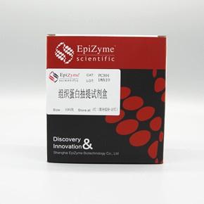 组织蛋白抽提试剂盒