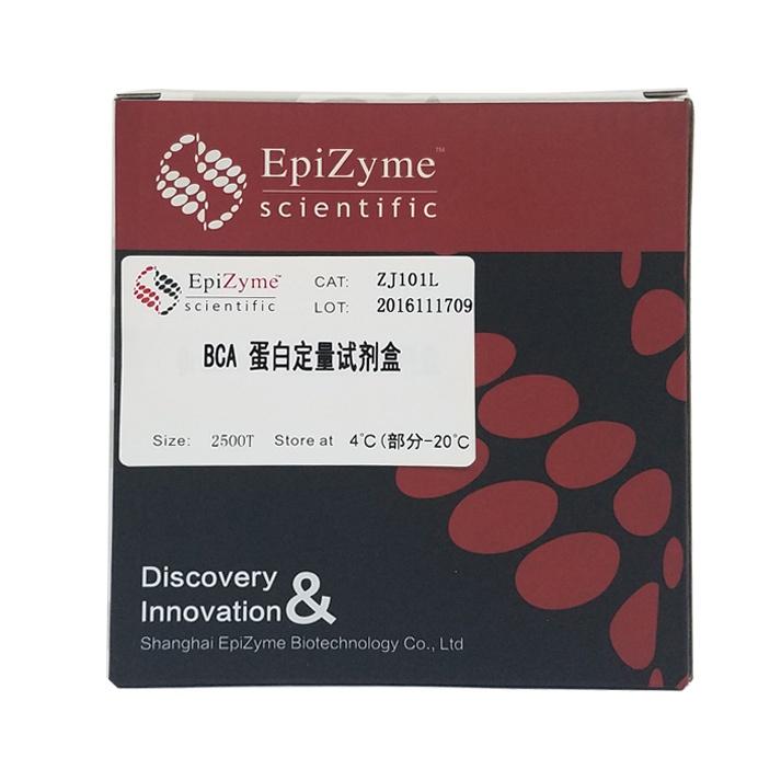 ZJ101L BCA蛋白定量试剂盒