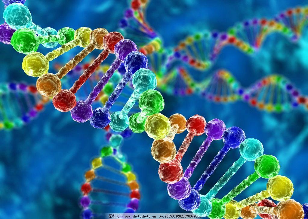 小基因组测序