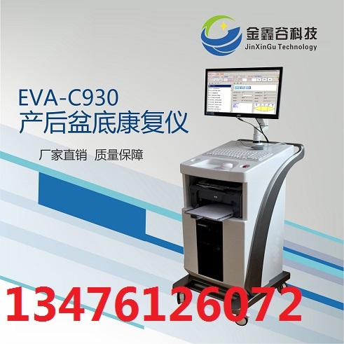 EVA-C930产后盆底康复治疗仪