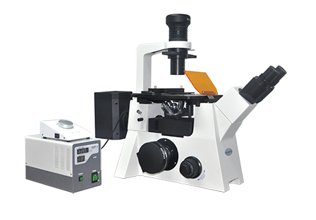 广西倒置荧光显微镜MF53
