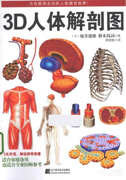 3D人体解剖图_唐晓艳2013译(彩图) pdf