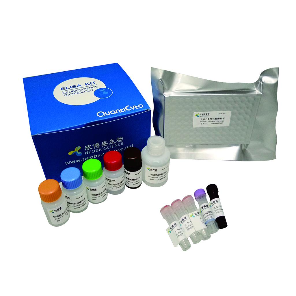 Mouse IL-1β ELISA kit(小鼠白细胞介素-1β  )