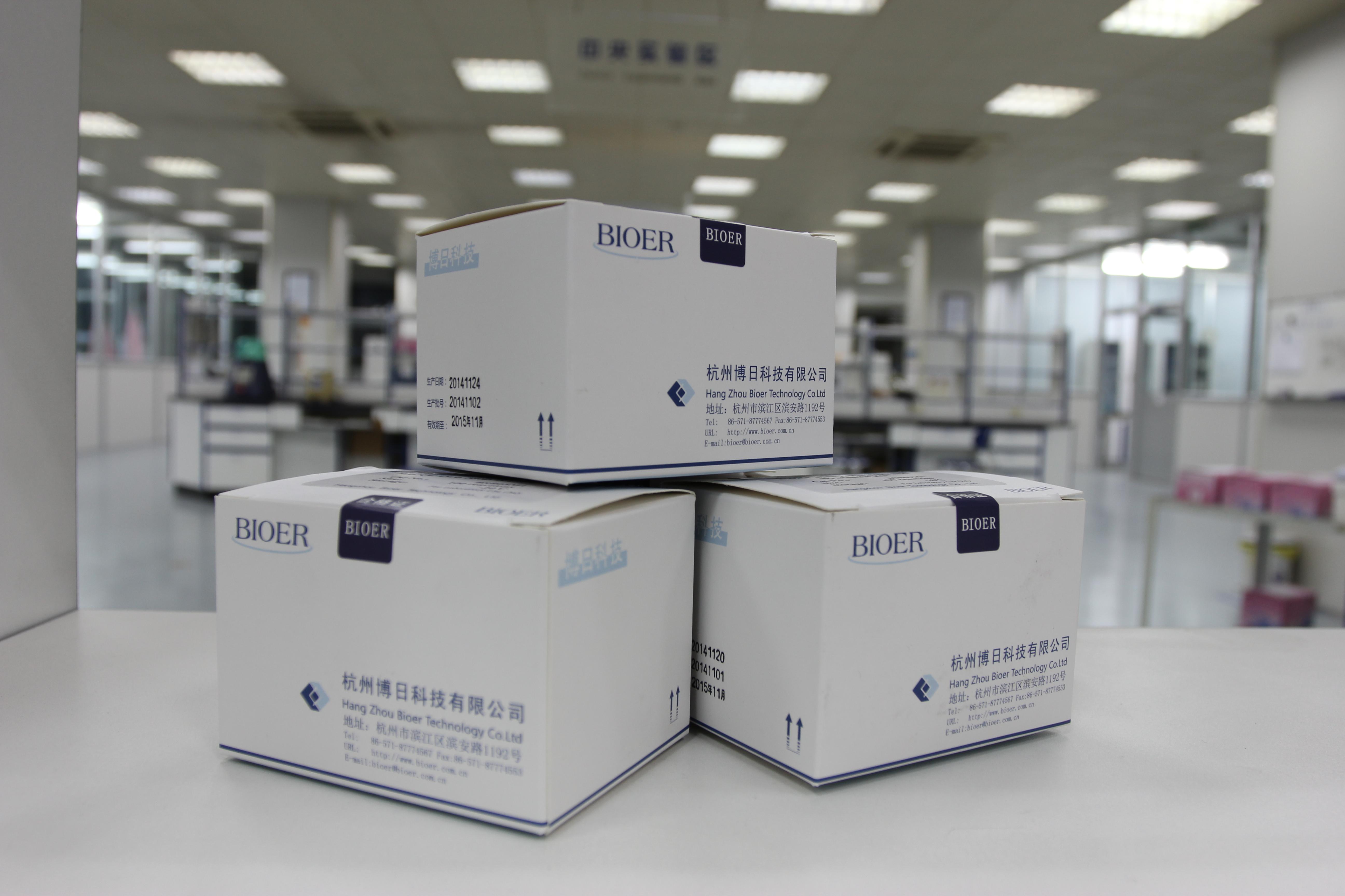 沙门氏菌核酸检测试剂盒(荧光PCR法)