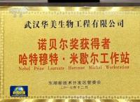 央视新闻02.png