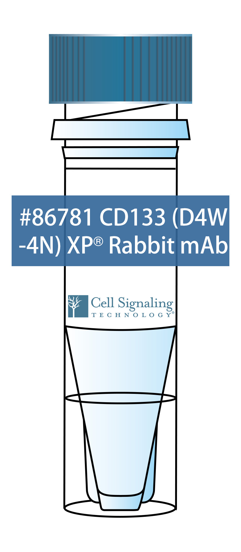 CD133 (D4W4N) XP®️ Rabbit mAb