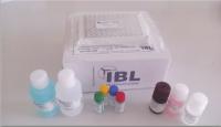 褪黑激素检测试剂盒
