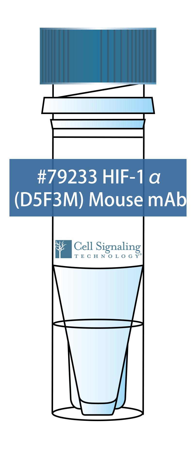 HIF-1α (D5F3M) Mouse mAb